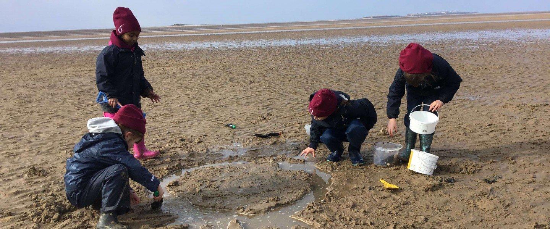 Beach school for Critical Thinking